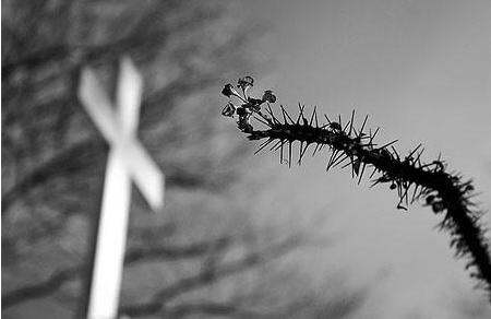 Livre-se do Medo da Morte com 7 dicas