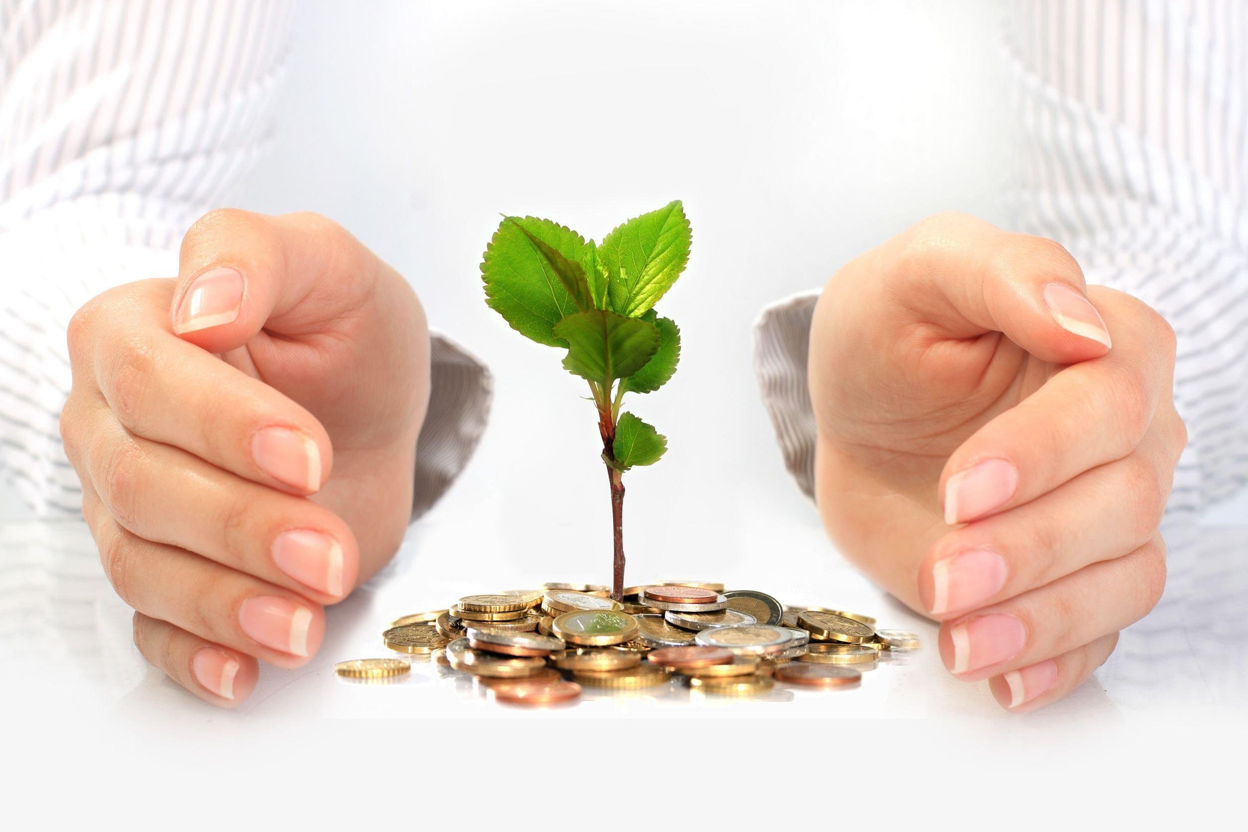 Como Abrir o Caminho da Prosperidade com Reiki