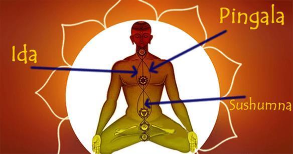 Como Limpar os Canais Ida, Pingala e Susshuma e Despertar a Kundaline